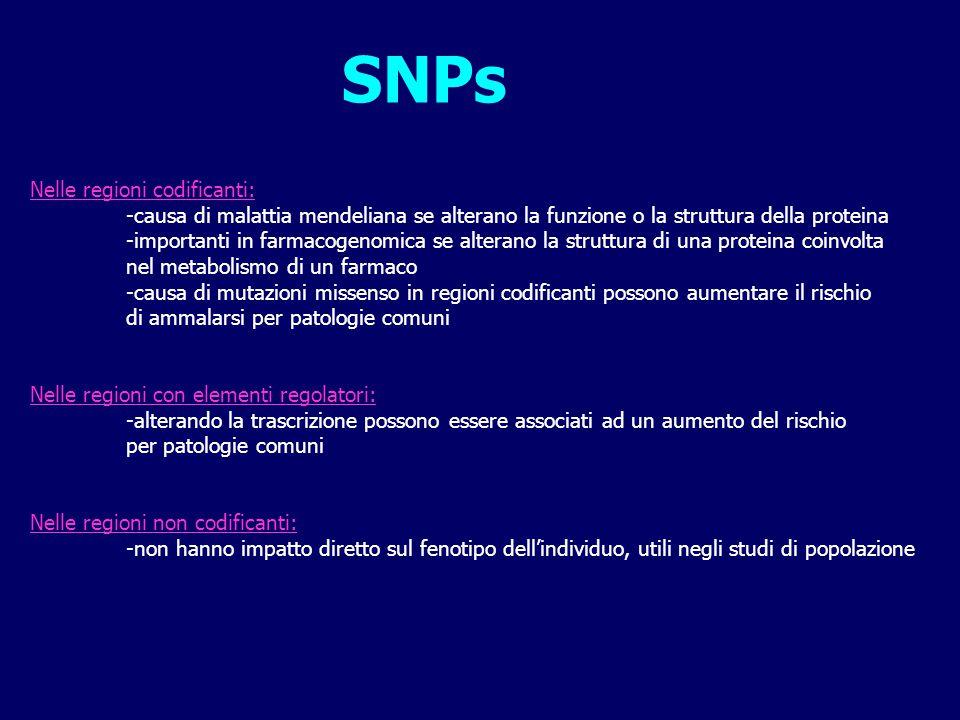 SNPs Nelle regioni codificanti: