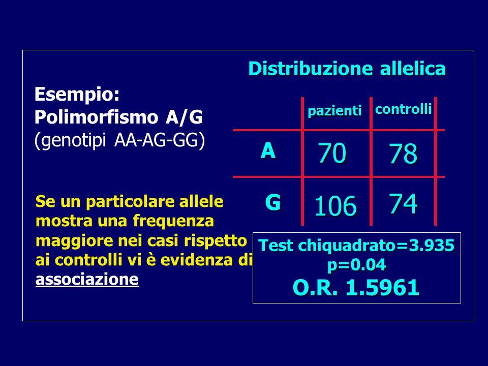 70 78 74 106 A G O.R. 1.5961 Distribuzione allelica Esempio: