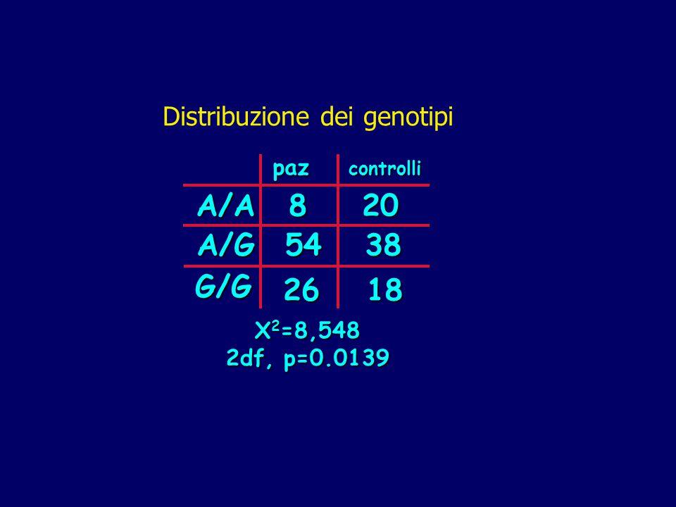 A/A 20 38 8 54 18 26 A/G G/G Distribuzione dei genotipi paz X2=8,548