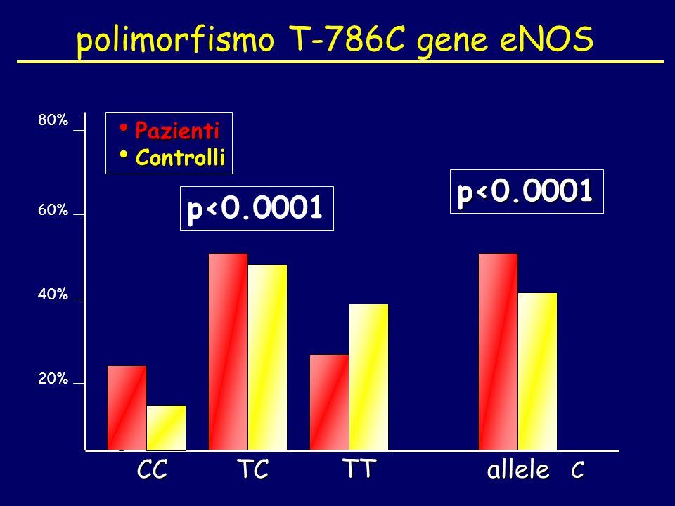 polimorfismo T-786C gene eNOS