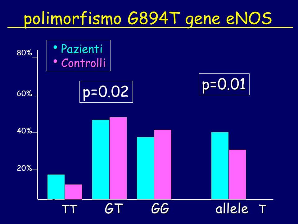 polimorfismo G894T gene eNOS