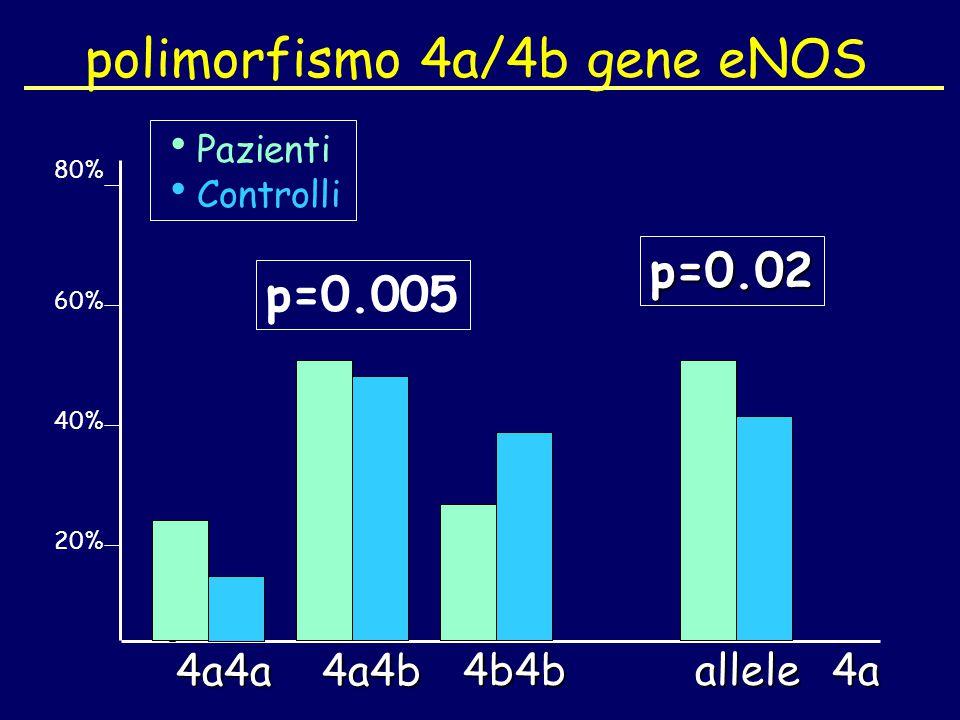 polimorfismo 4a/4b gene eNOS