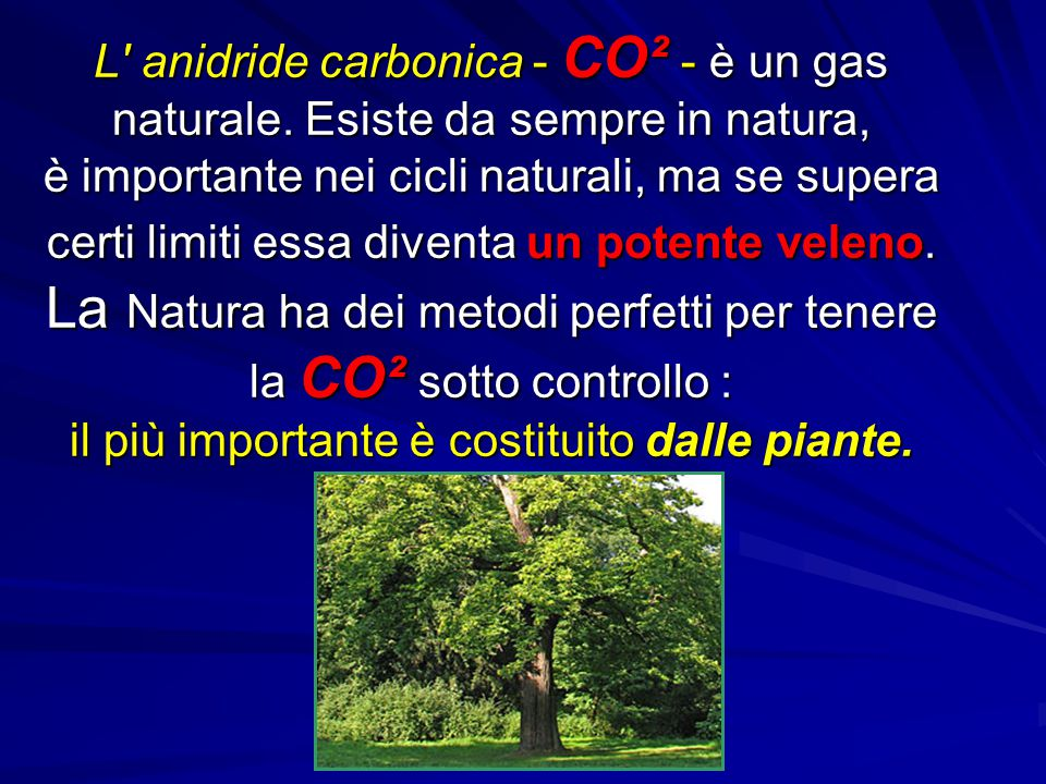 L anidride carbonica - CO² - è un gas naturale