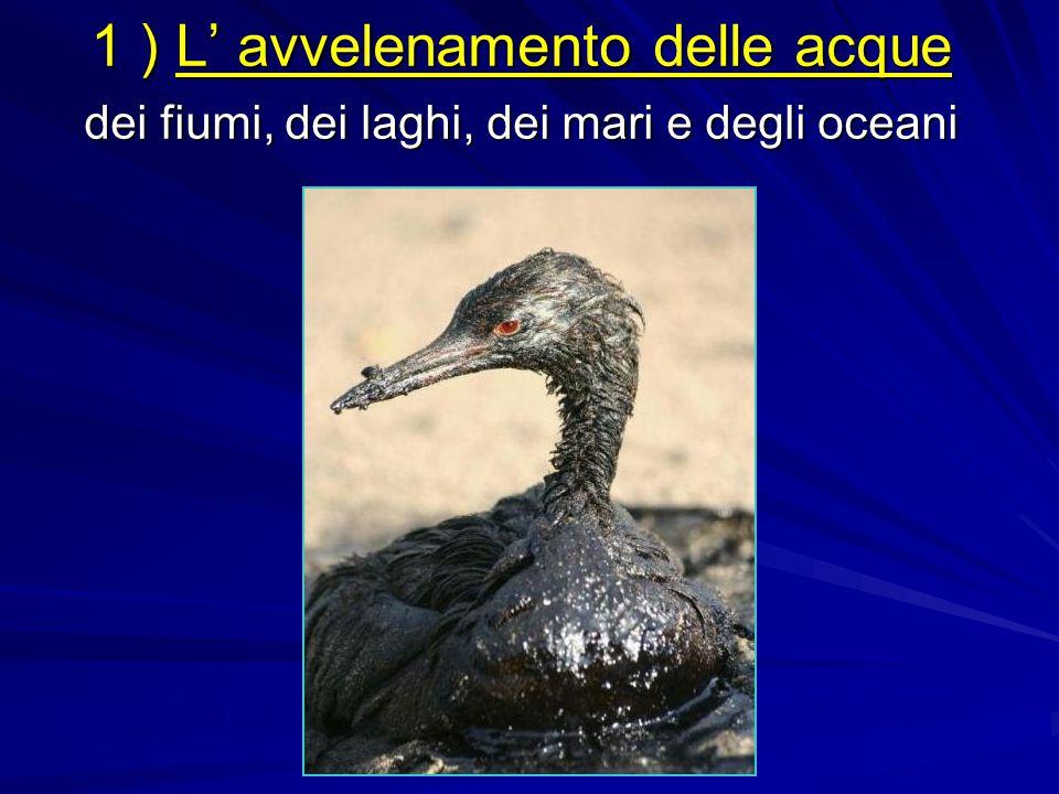 1 ) L' avvelenamento delle acque dei fiumi, dei laghi, dei mari e degli oceani