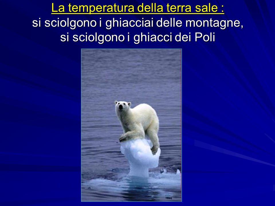 La temperatura della terra sale : si sciolgono i ghiacciai delle montagne, si sciolgono i ghiacci dei Poli