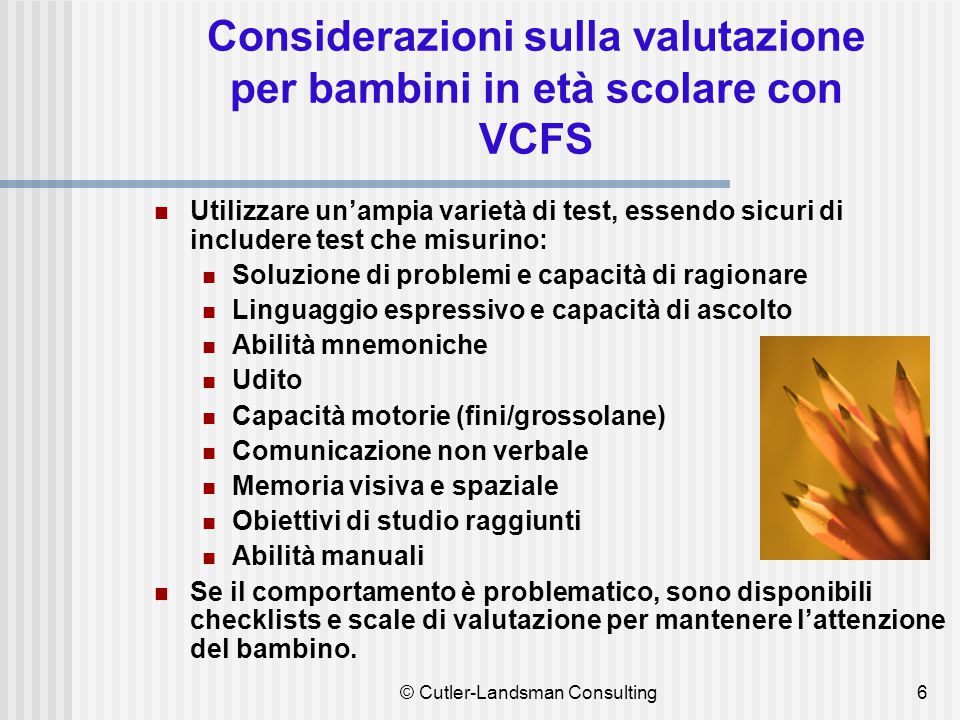 Aree di interesse per un bambino con VCFS