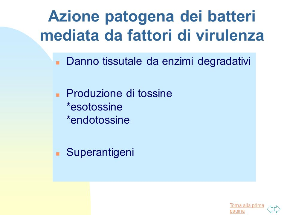 Azione patogena dei batteri mediata da fattori di virulenza