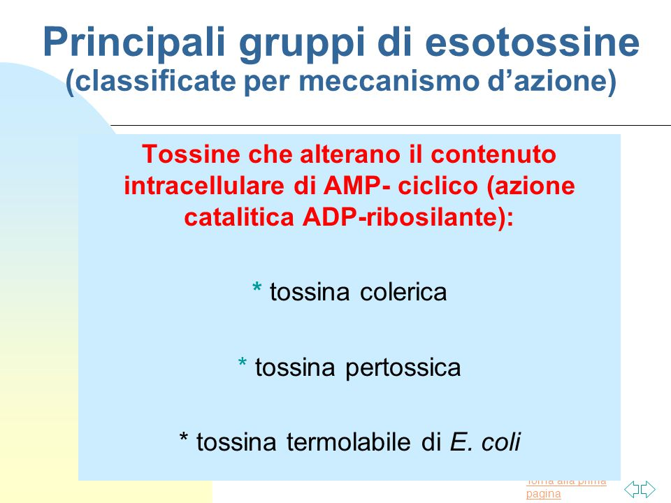 Principali gruppi di esotossine (classificate per meccanismo d'azione)