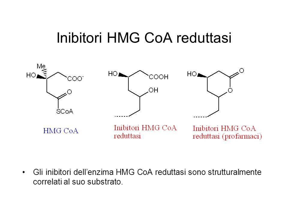 Inibitori HMG CoA reduttasi