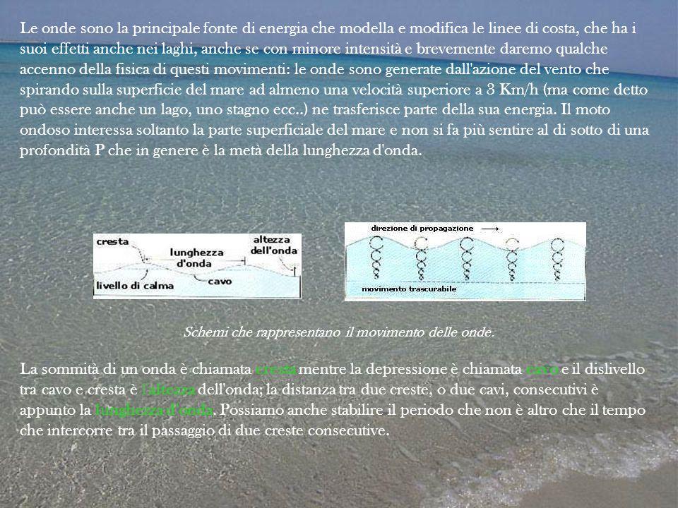 Schemi che rappresentano il movimento delle onde.