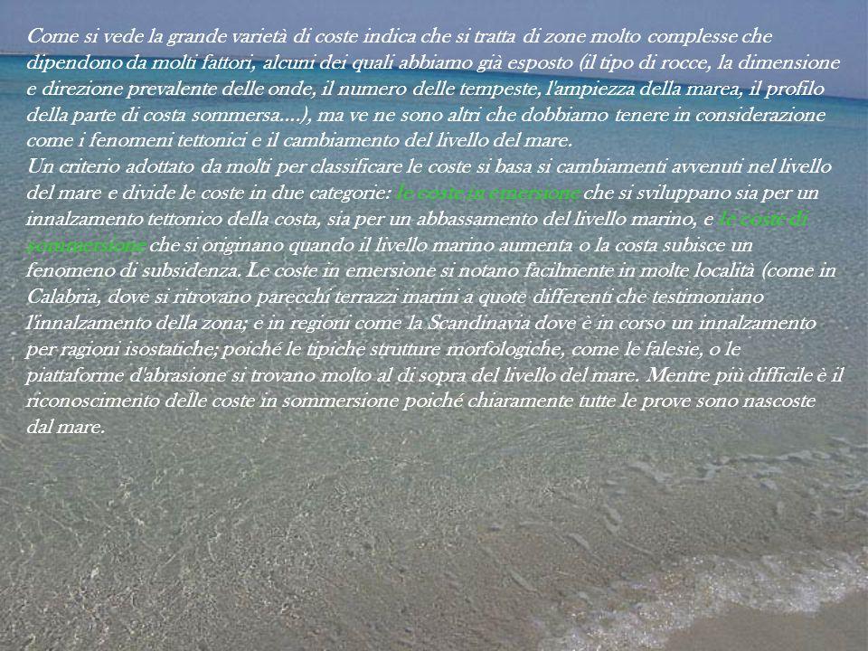 Liceo scientifico o grassi savona ppt scaricare - Sopra un mare di specchi si vola ...