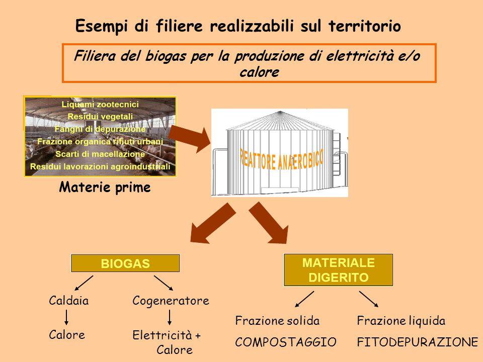 Filiera del biogas per la produzione di elettricità e/o calore