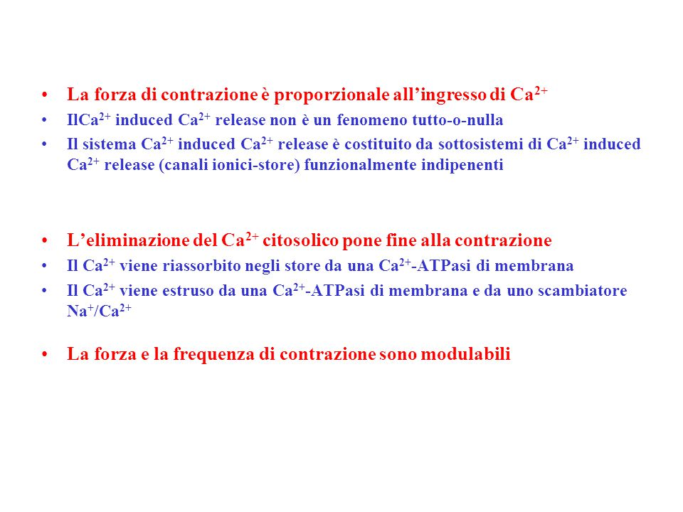 La forza di contrazione è proporzionale all'ingresso di Ca2+