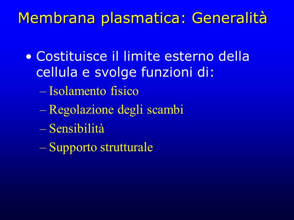Membrana plasmatica: Generalità