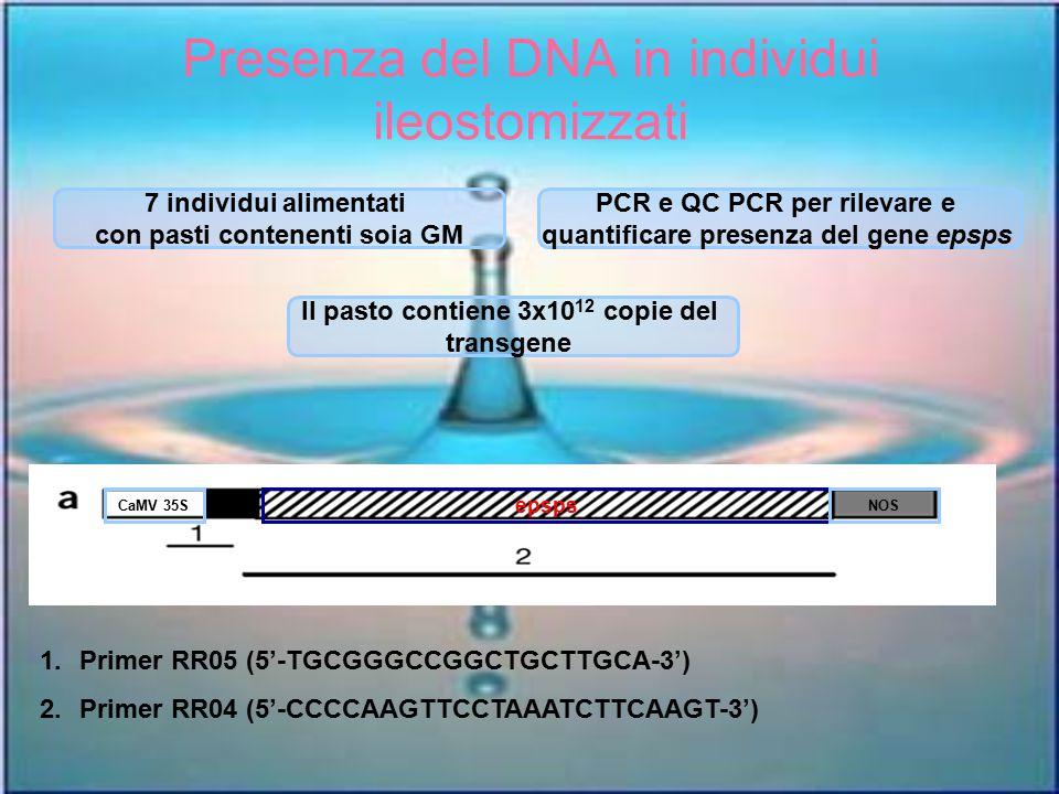 Presenza del DNA in individui ileostomizzati
