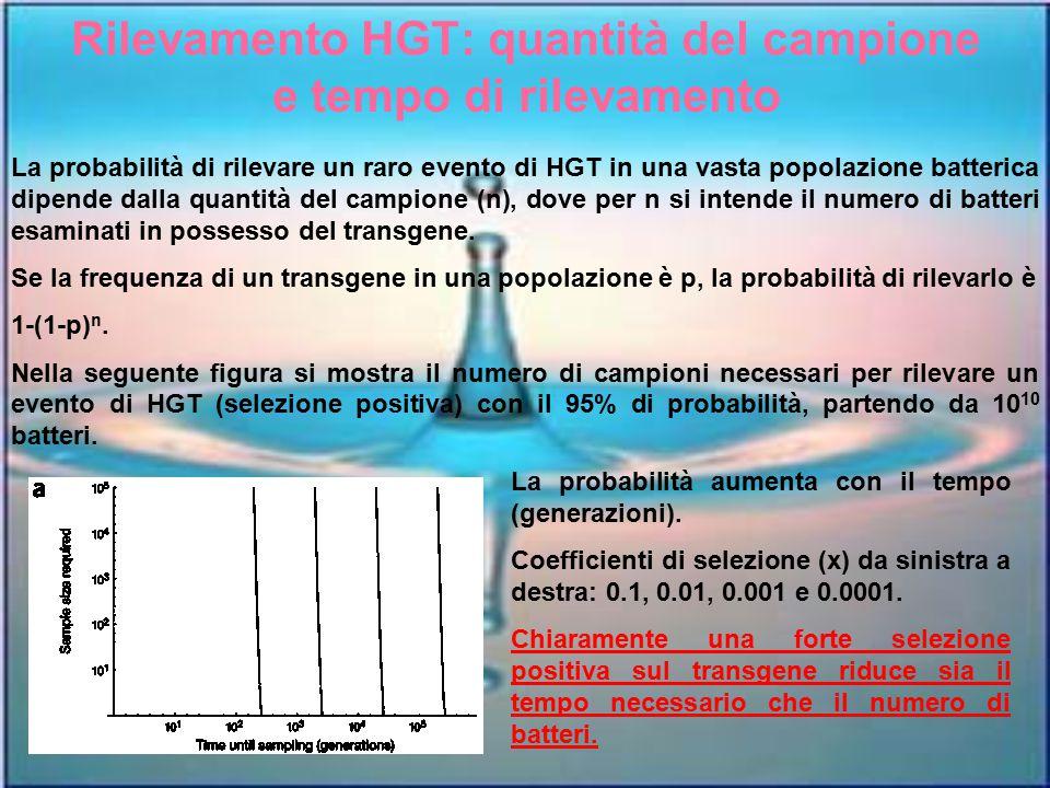 Rilevamento HGT: quantità del campione e tempo di rilevamento