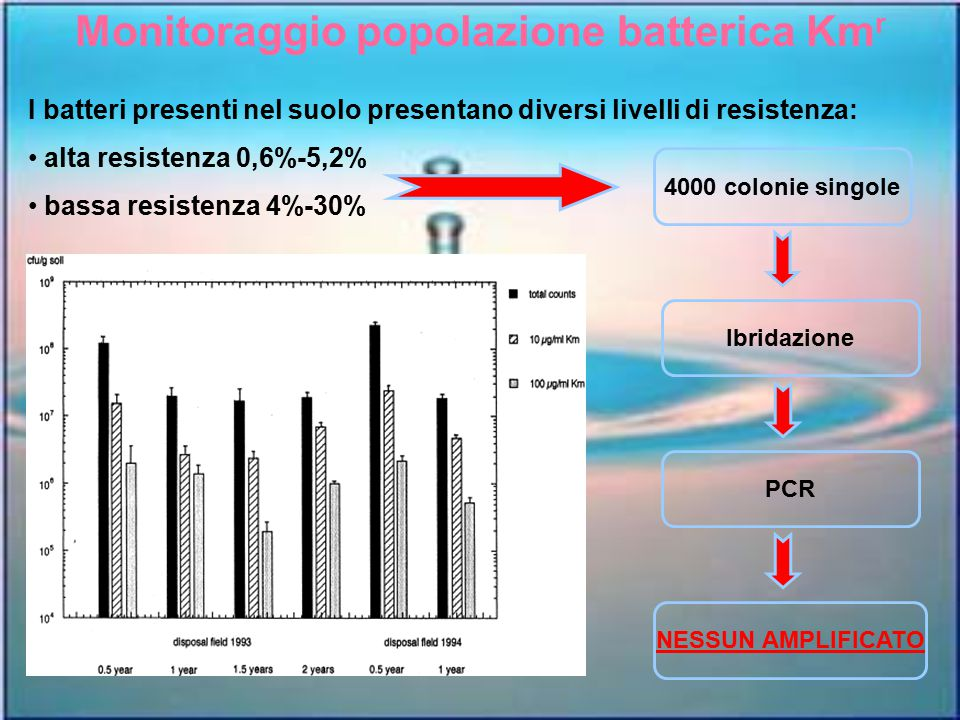 Monitoraggio popolazione batterica Kmr