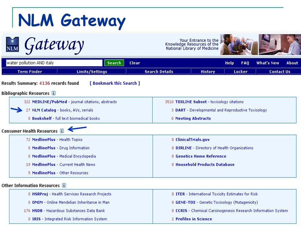 NLM Gateway
