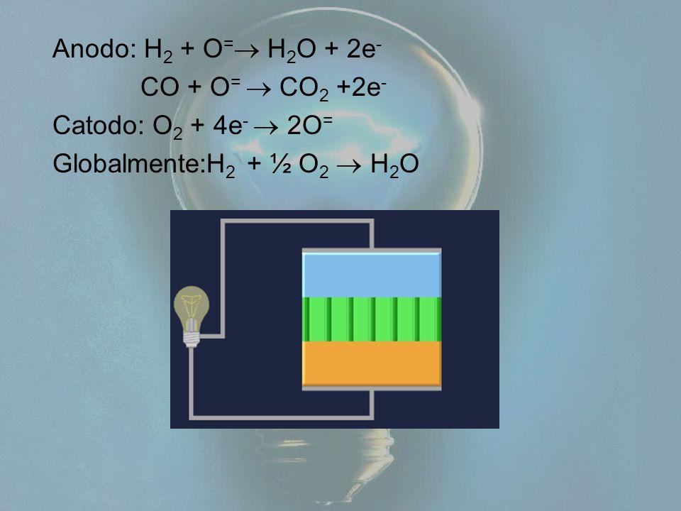 Anodo: H2 + O= H2O + 2e- CO + O=  CO2 +2e- Catodo: O2 + 4e-  2O= Globalmente:H2 + ½ O2  H2O