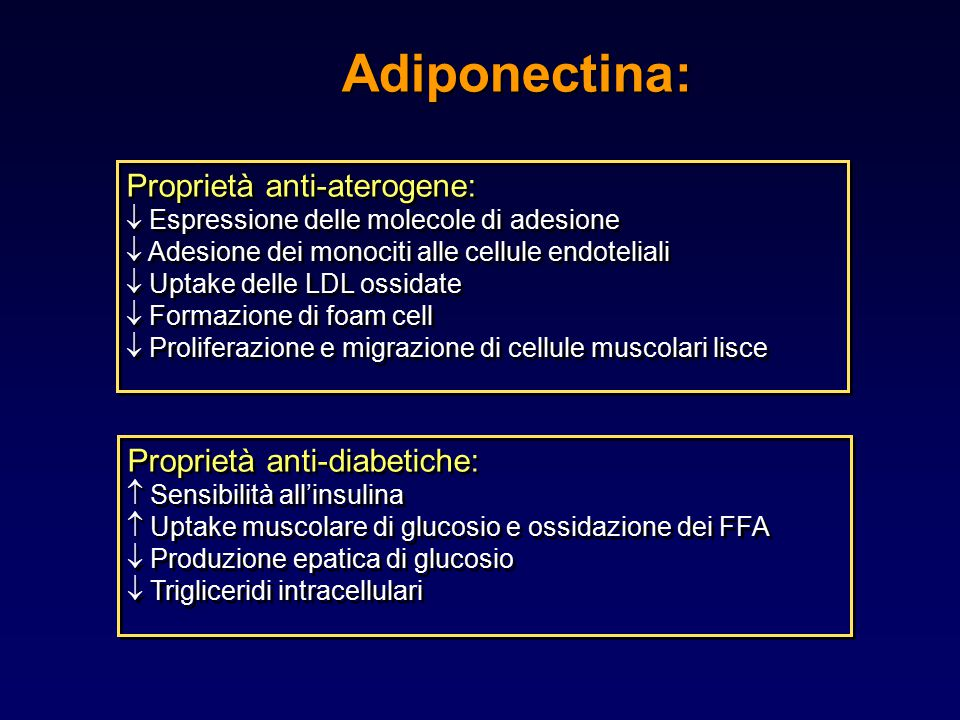 Adiponectina: Proprietà anti-aterogene: Proprietà anti-diabetiche: