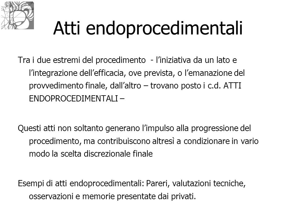 Atti endoprocedimentali