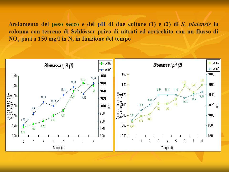 Andamento del peso secco e del pH di due colture (1) e (2) di S