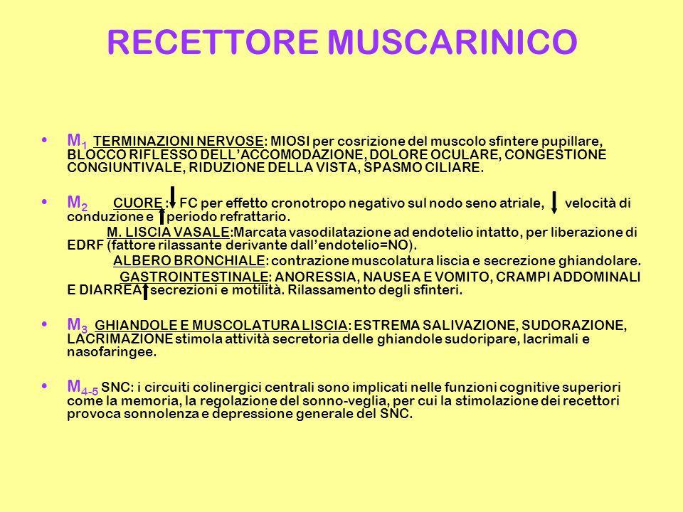 RECETTORE MUSCARINICO