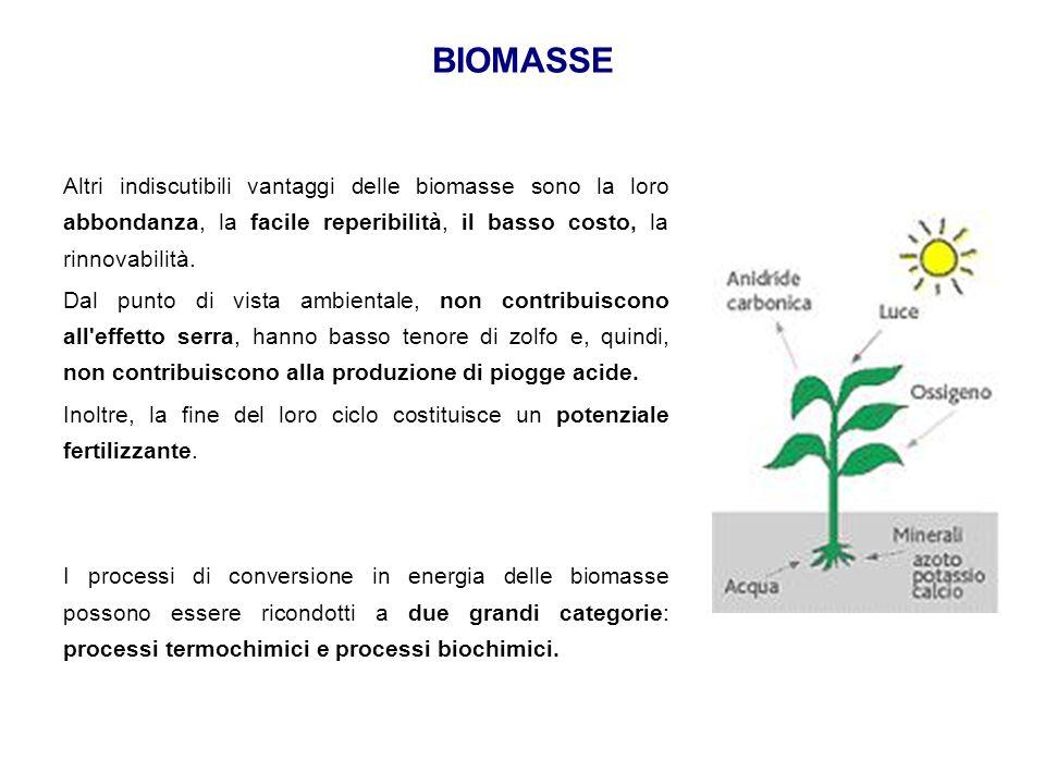 BIOMASSE Altri indiscutibili vantaggi delle biomasse sono la loro abbondanza, la facile reperibilità, il basso costo, la rinnovabilità.