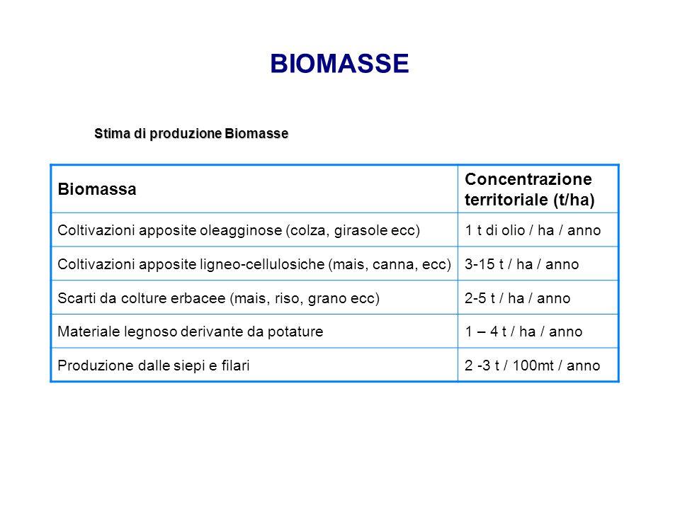 BIOMASSE Concentrazione territoriale (t/ha) Biomassa