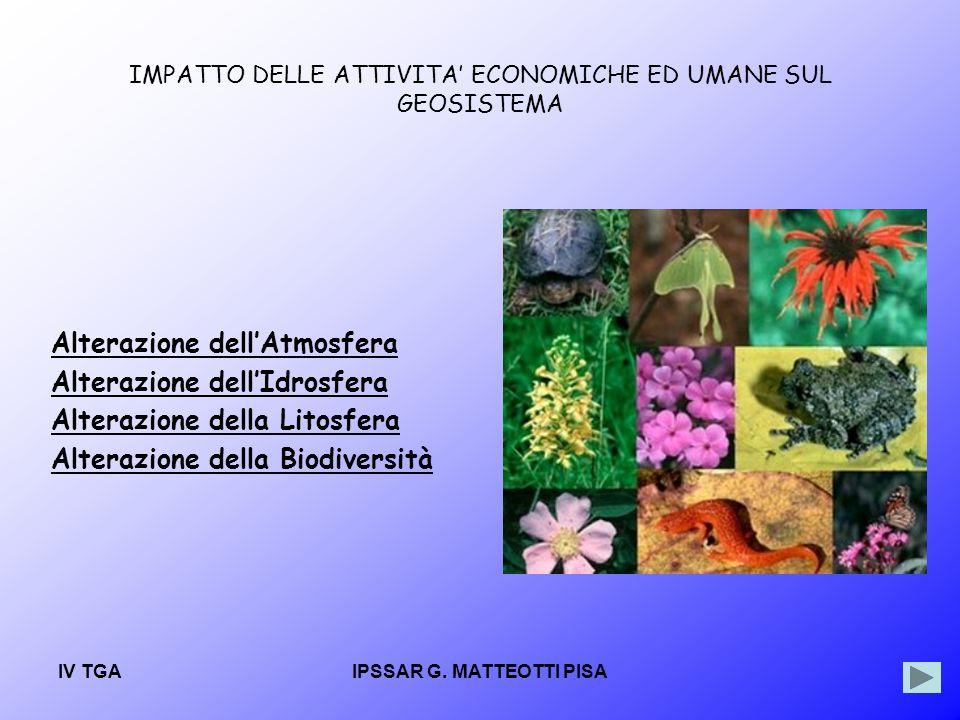 IMPATTO DELLE ATTIVITA' ECONOMICHE ED UMANE SUL GEOSISTEMA
