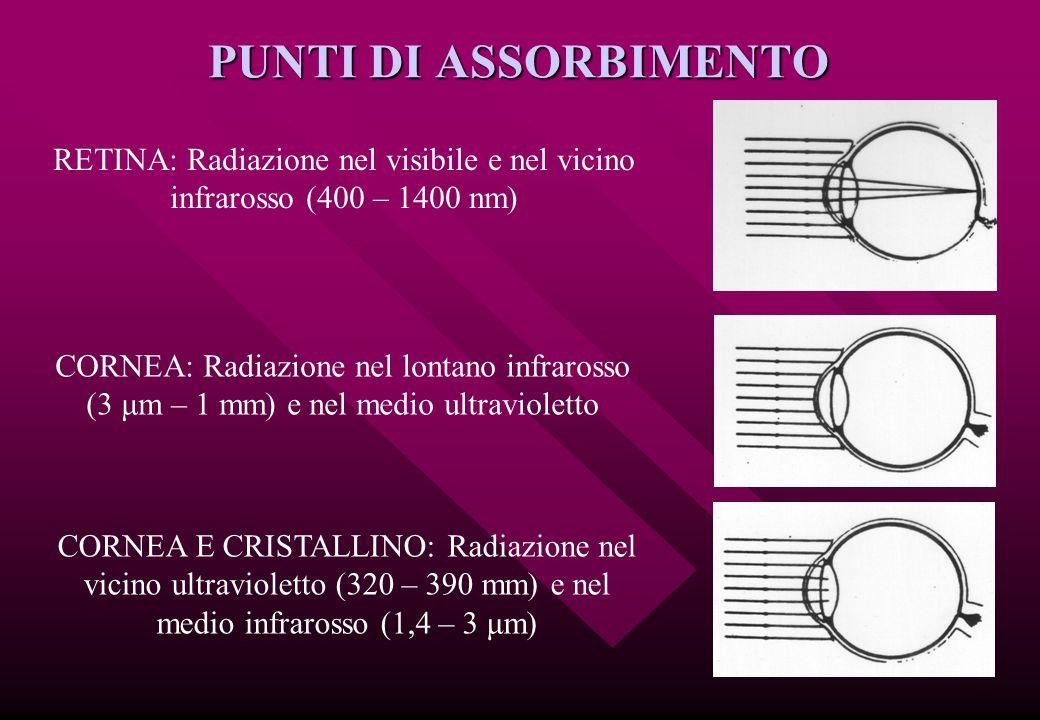 PUNTI DI ASSORBIMENTO RETINA: Radiazione nel visibile e nel vicino infrarosso (400 – 1400 nm)