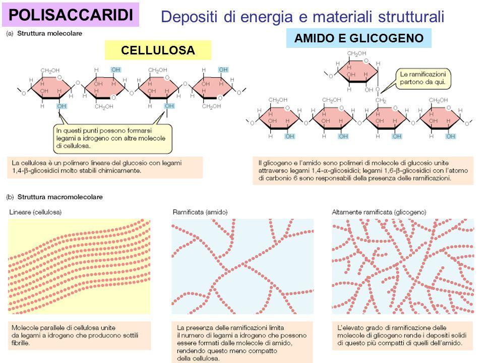 Depositi di energia e materiali strutturali
