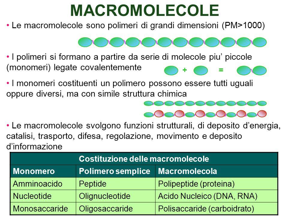 Costituzione delle macromolecole