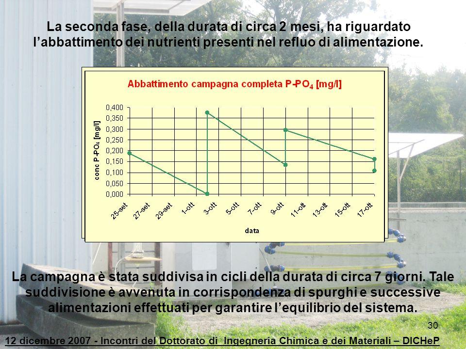 La seconda fase, della durata di circa 2 mesi, ha riguardato l'abbattimento dei nutrienti presenti nel refluo di alimentazione.