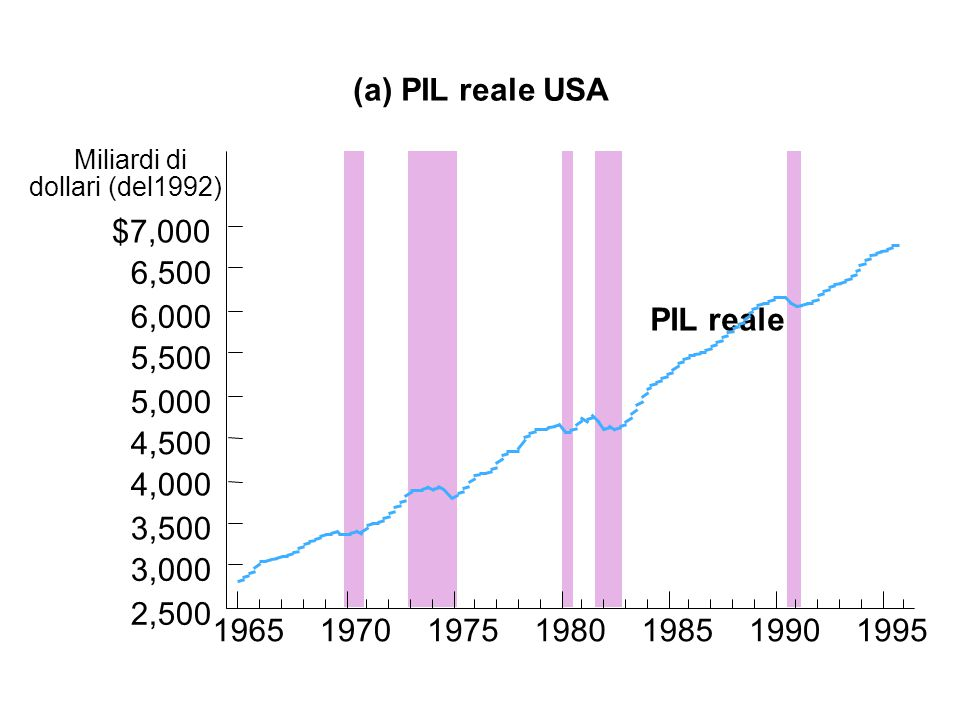 (a) PIL reale USA PIL reale