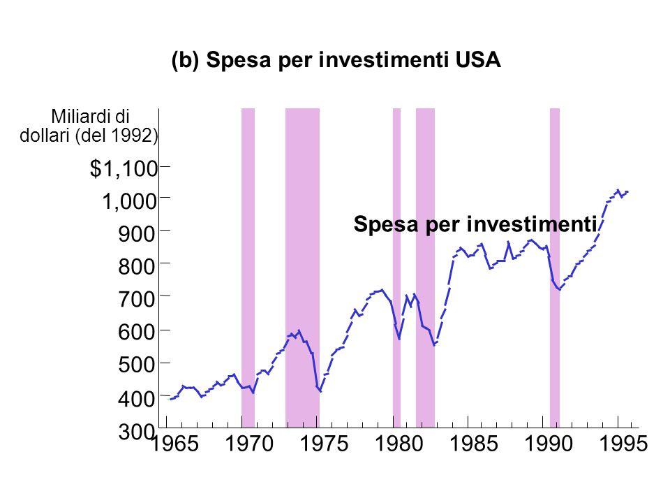(b) Spesa per investimenti USA
