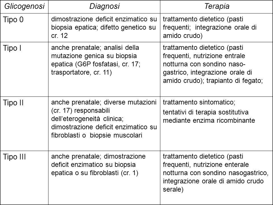 Glicogenosi Diagnosi Terapia Tipo 0 Tipo I Tipo II Tipo III