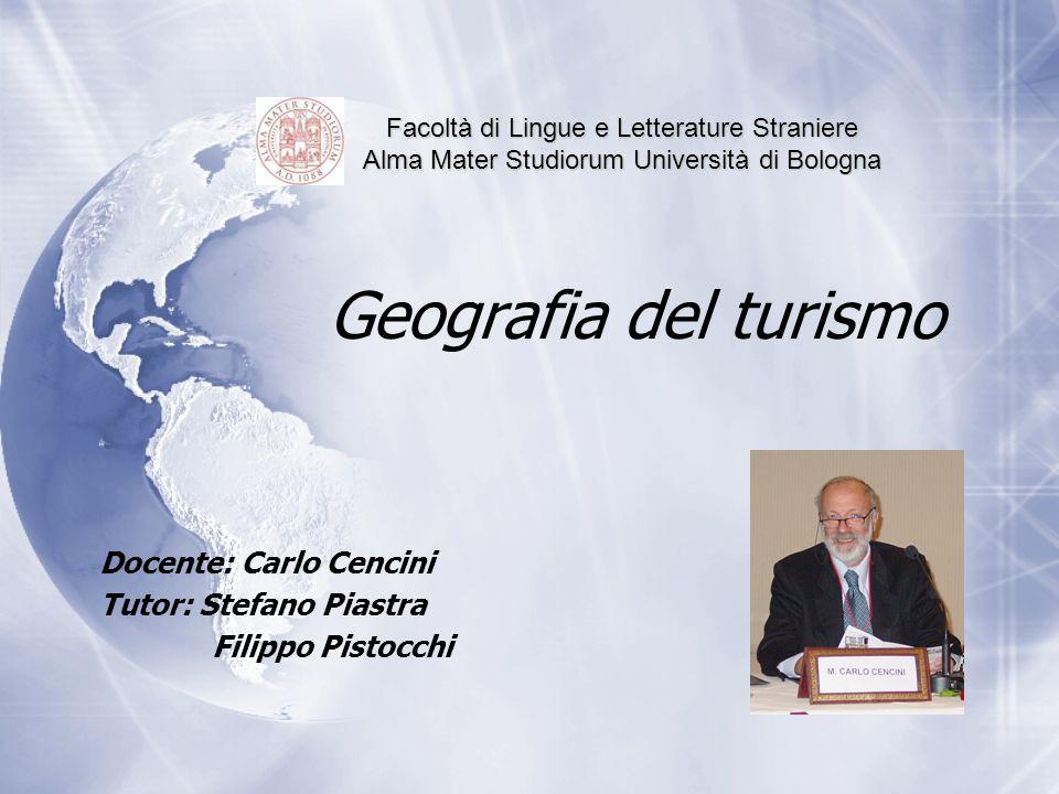 Docente: Carlo Cencini Tutor: Stefano Piastra Filippo Pistocchi
