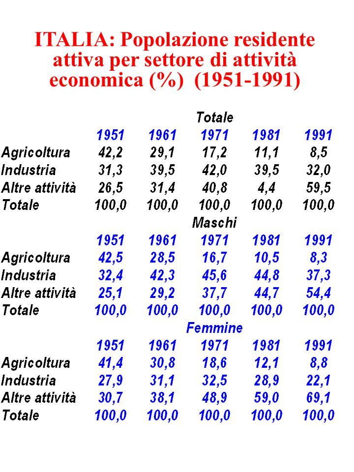 ITALIA: Popolazione residente attiva per settore di attività economica (%) (1951-1991)