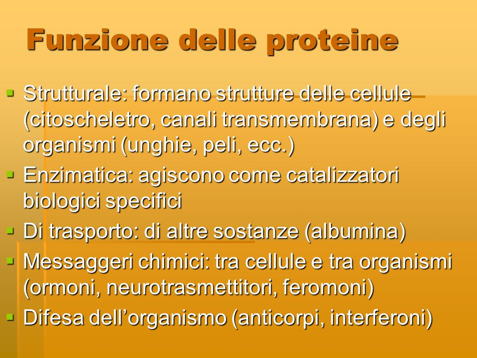 Funzione delle proteine