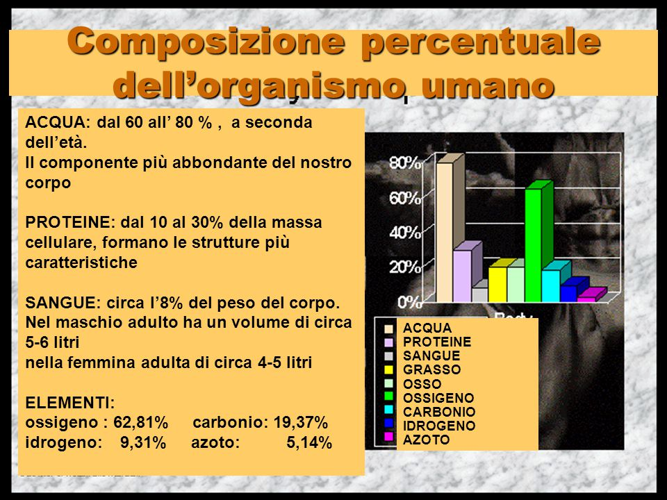 Composizione percentuale dell'organismo umano