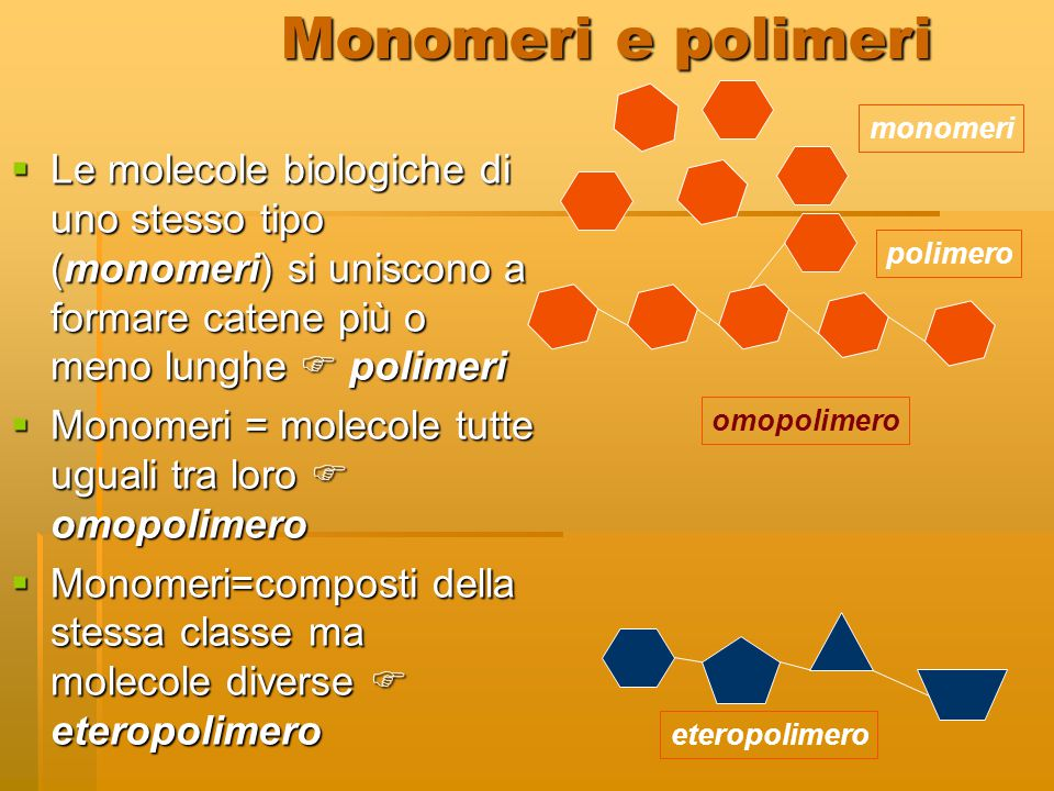 Monomeri e polimeri monomeri. polimero. omopolimero.
