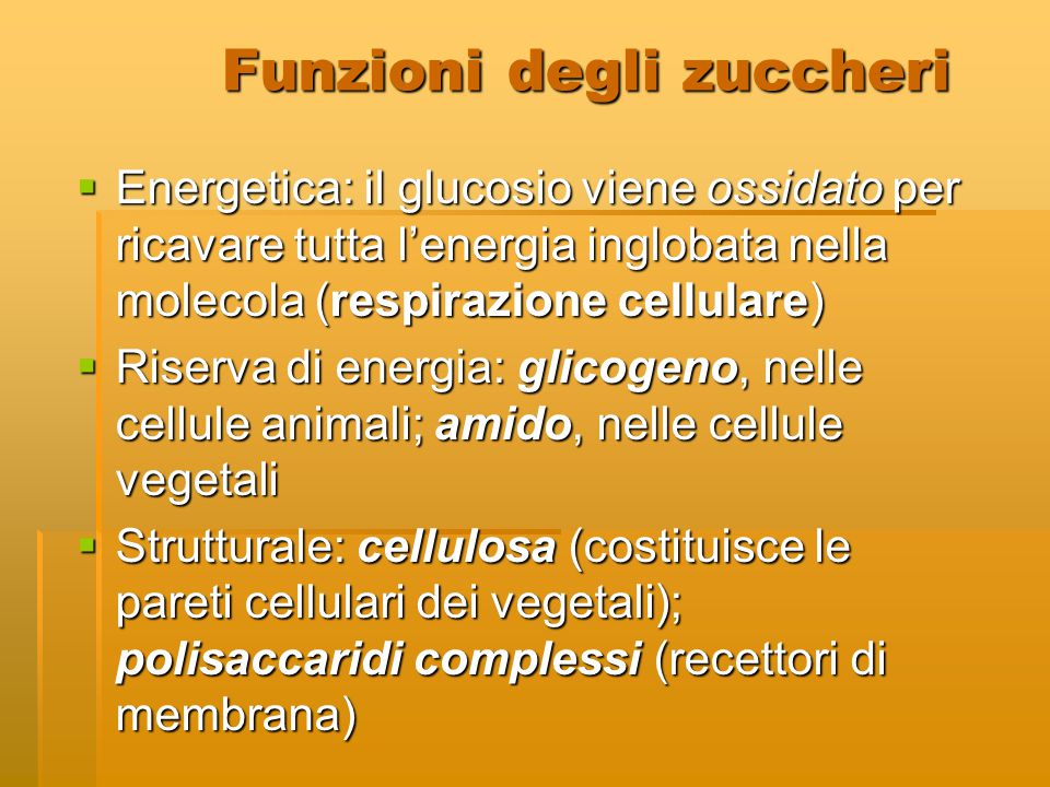 Funzioni degli zuccheri