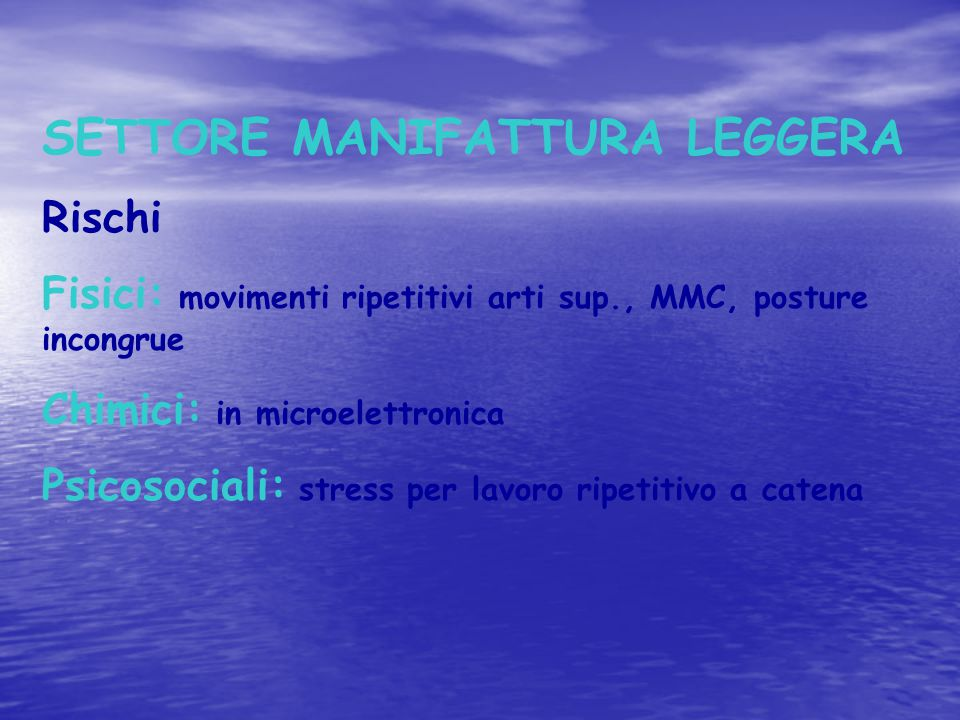 SETTORE MANIFATTURA LEGGERA