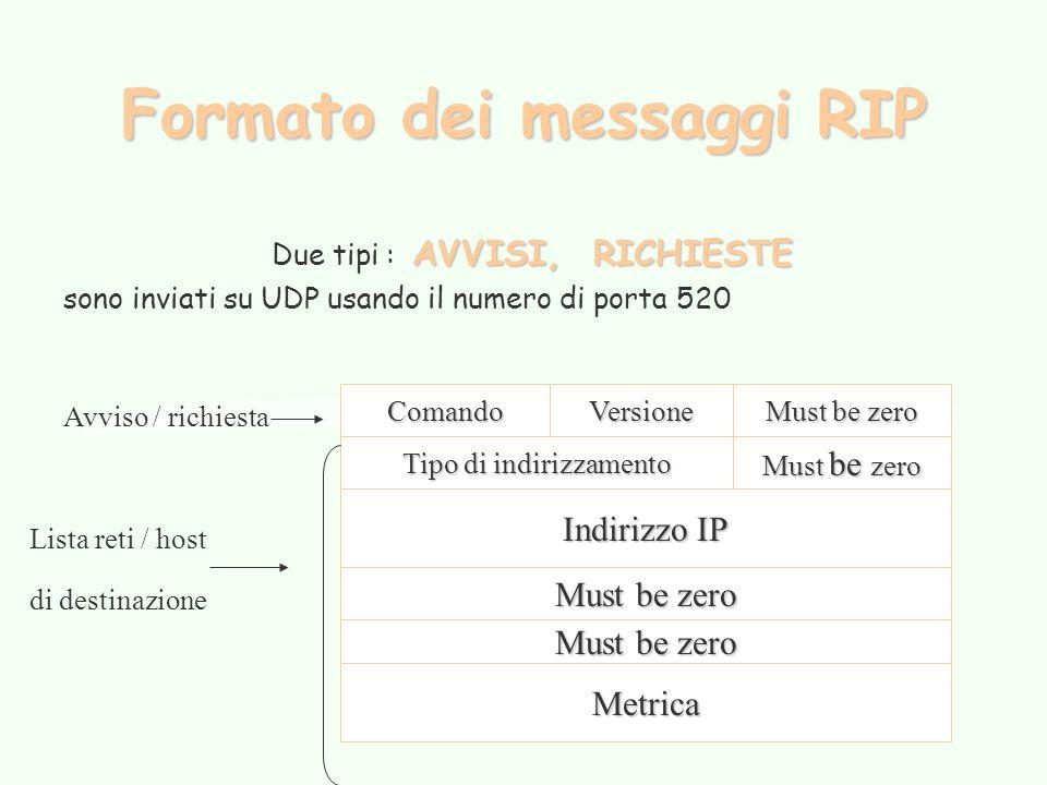 Formato dei messaggi RIP