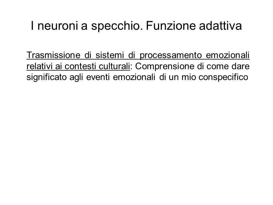 I neuroni a specchio. Funzione adattiva