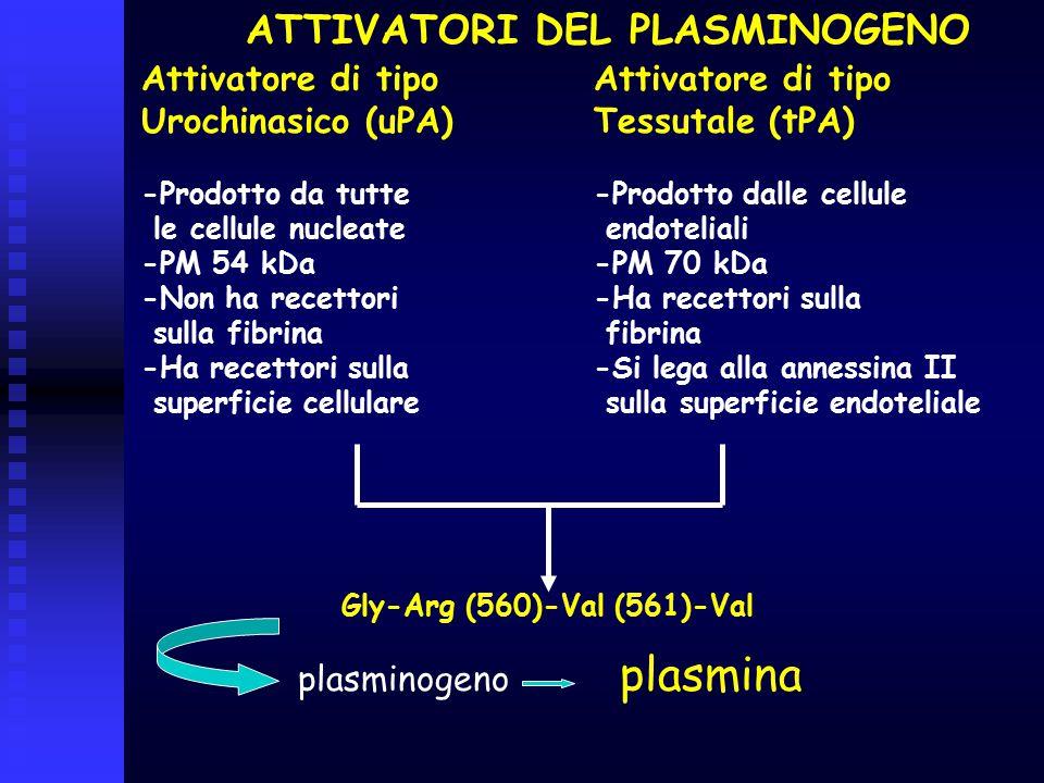 plasmina ATTIVATORI DEL PLASMINOGENO Attivatore di tipo