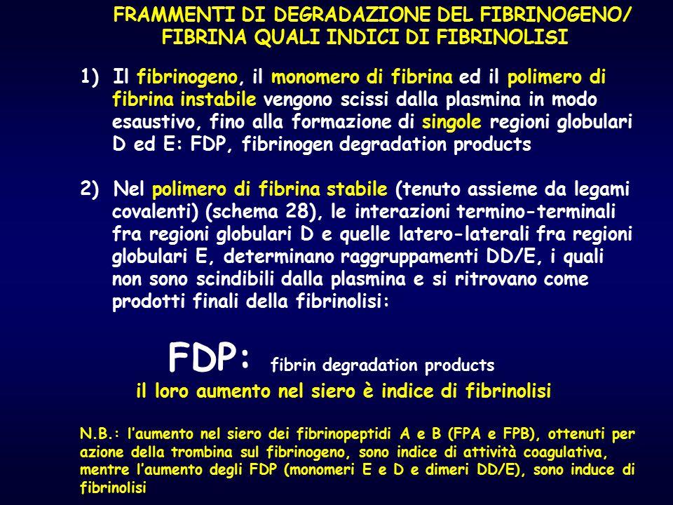 FRAMMENTI DI DEGRADAZIONE DEL FIBRINOGENO/