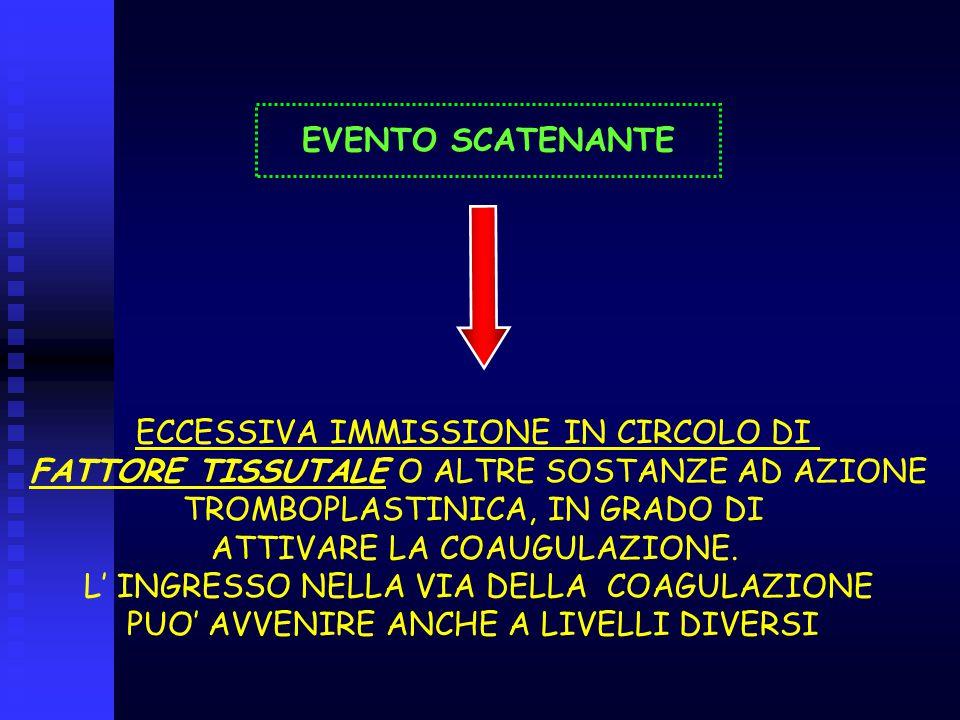 ECCESSIVA IMMISSIONE IN CIRCOLO DI