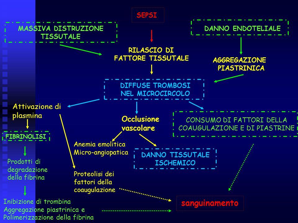 sanguinamento Attivazione di plasmina Occlusione vascolare SEPSI